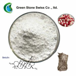 White Birch Bark Extract Natural Extracts