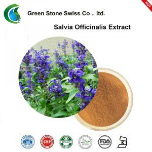 Salvia Officinalis Extract Powder